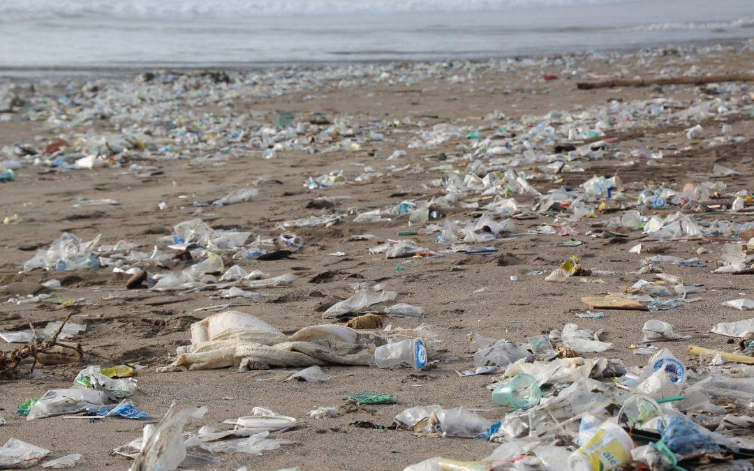 Plásticos, residuos muy contaminantes